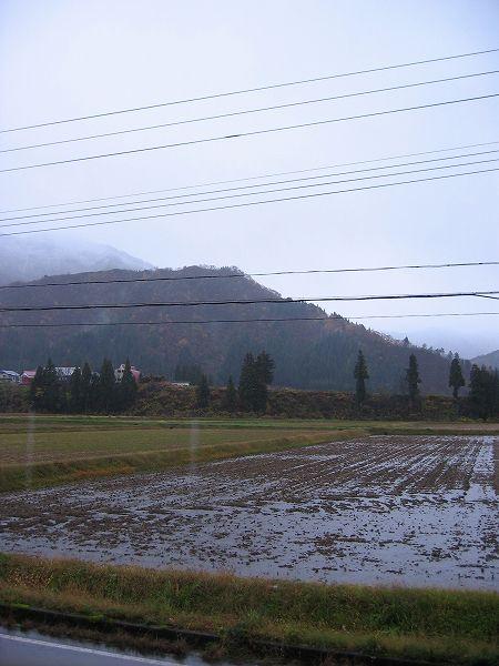 今朝は雨ですが冷え込んでいます