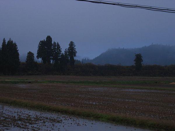 寒くなってきました@魚沼産コシヒカリの田んぼ