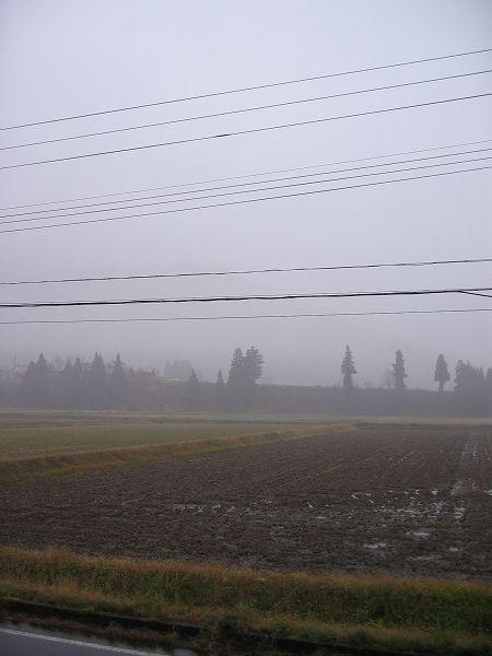 南魚沼市は雨ですが寒くはないです