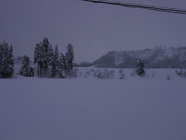 そろそろ大雪も峠を越えそうです