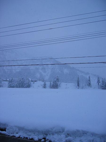 雪が積もりましたが、昨日までのような大雪ではなくなっています
