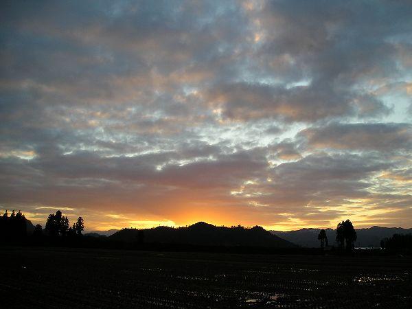 田んぼの向こうの夕焼けがきれいでした