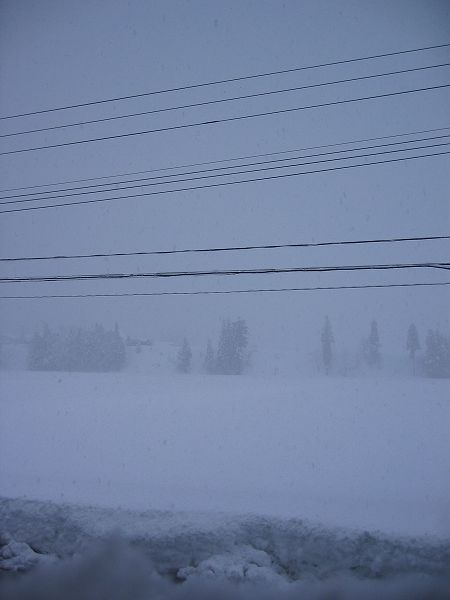 魚沼産コシヒカリの田んぼは吹雪の朝です