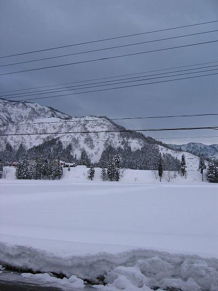 今朝は水道が凍るほどの厳しい冷え込みです