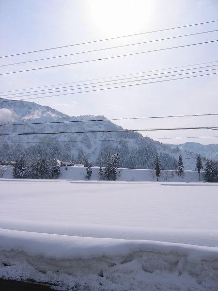 日射しのために田んぼの雪面がまぶしいです