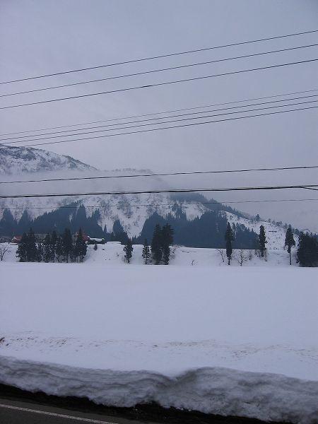 今日もまたくもりで雪がどんどん解けています