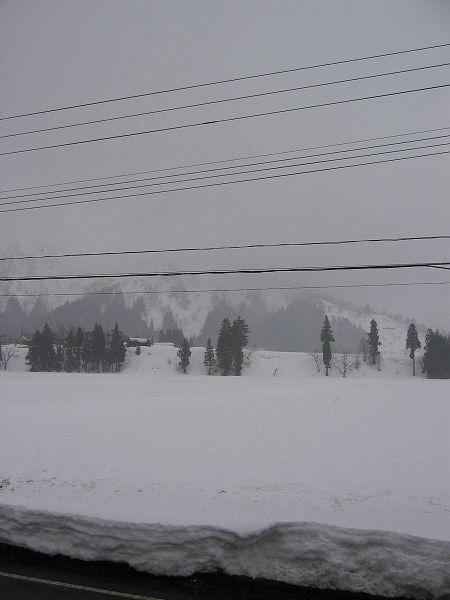 新潟県南魚沼市では久しぶりに雪が降っています