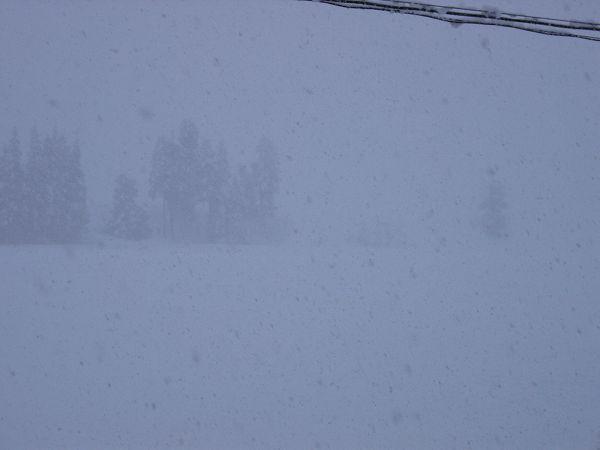 今日もまだ南魚沼市では雪が降り続いています