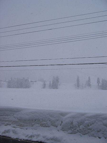 魚沼産コシヒカリの里・南魚沼市はまた大雪になりました