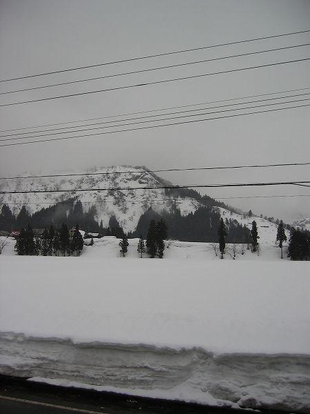 今朝、新潟県南魚沼市では久しぶりに雪が積もりました