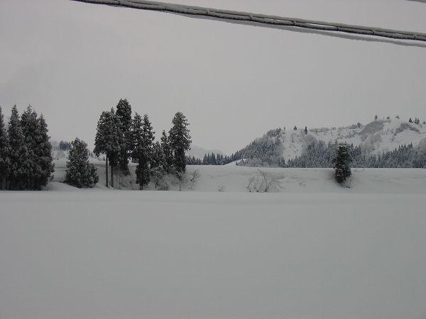 魚沼はまた冬景色に戻りました
