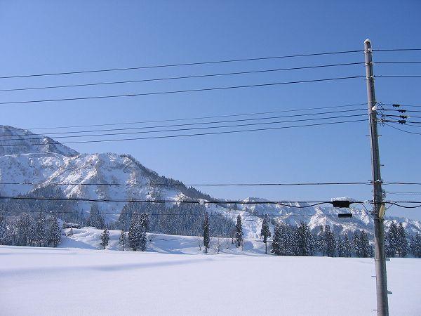 青空が広がって田んぼの雪面がまぶしいです