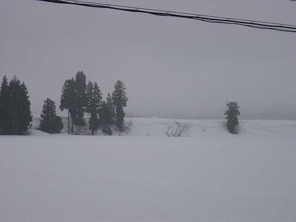 3月最後に魚沼では雪が降っています