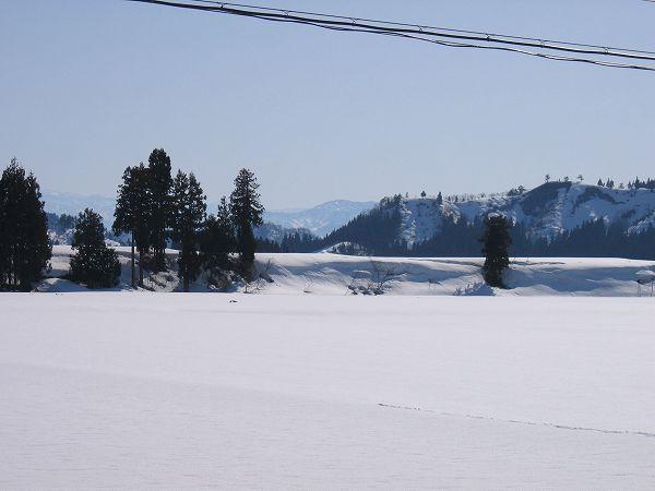 朝には15cmの積雪、その後は快晴の青空になりました