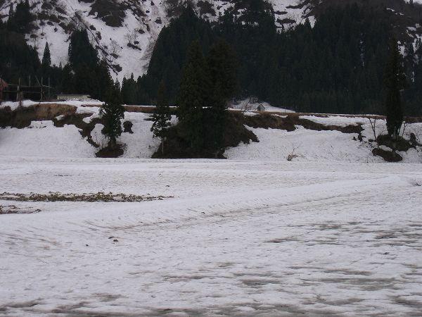田んぼの雪解けがどんどん進んで土が見えてきました