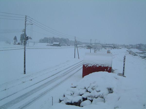 道路もすっかり真っ白になっていますが、もう4月なので除雪車は来ないです。