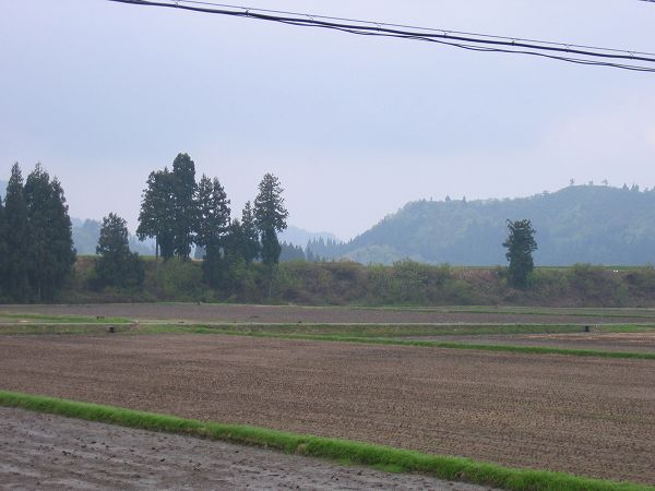 今朝の魚沼は雨が降ったり日射しが出たりと不安定な天気です