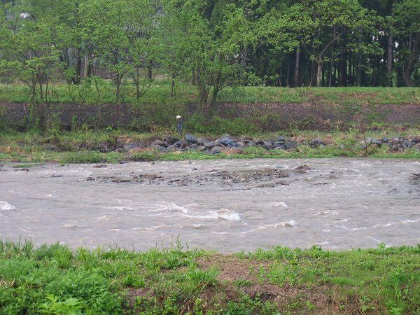 水無川の水量が多くなっています