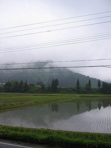 今朝の魚沼は雨で寒いです