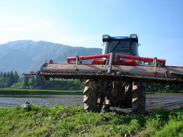 トラクターで代かき作業をする田んぼ