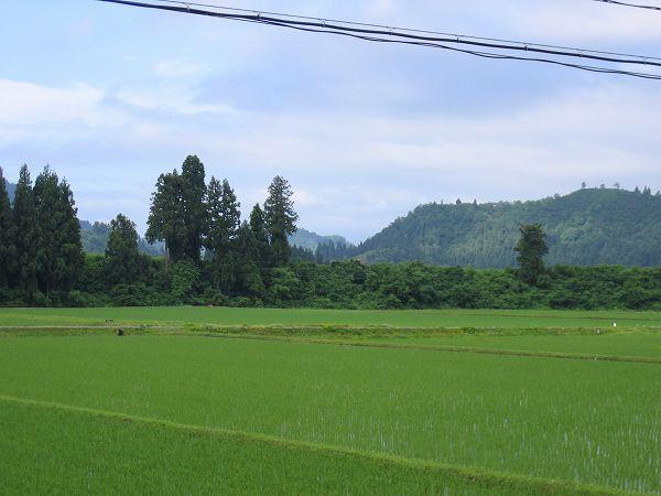 新潟県南魚沼市では青空が見えていい天気になってきました