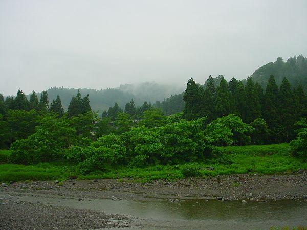 今日の魚沼は雨で気温が低く、肌寒く感じます