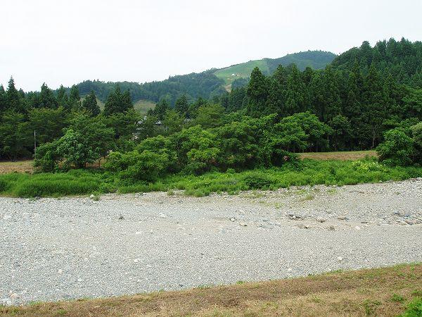 今年の梅雨は雨が少なかったので、水無川が枯れています