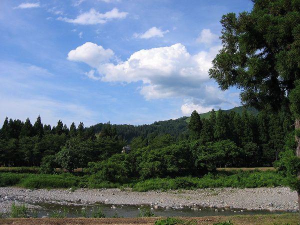 田んぼの脇を流れる水無川