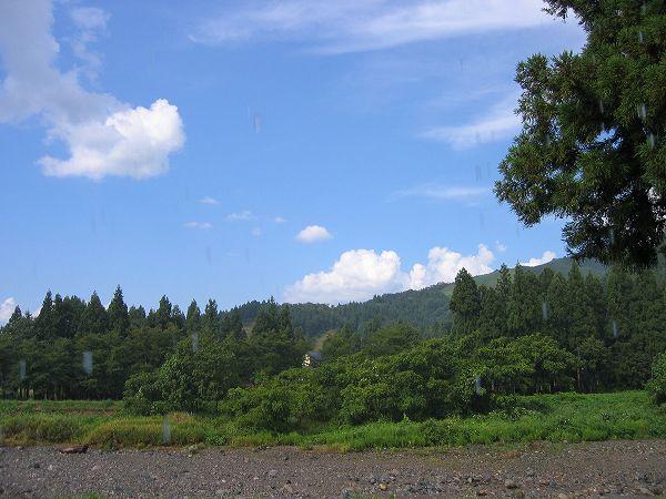 振り返って水無川の方を見ると青空が広がっています