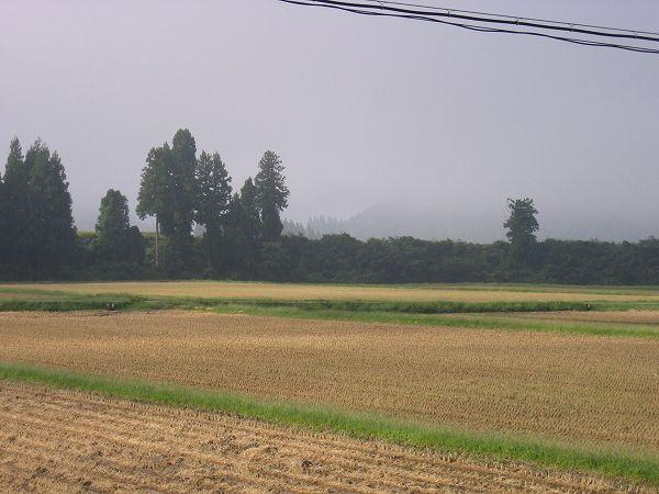 稲刈りが終わり、朝はすっかり秋らしく涼しくなってきました