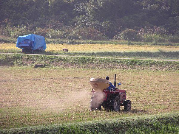 来年の稲作に向けての作業が行われている魚沼産コシヒカリの田んぼ