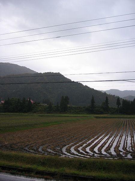 今朝も雨降り・・・気温は低めです