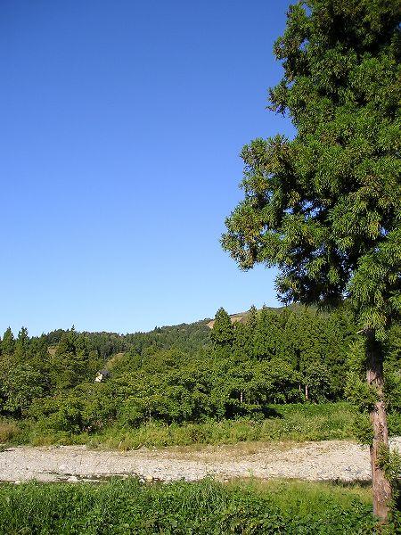 澄んだ青空が広がって爽やかな秋晴れの一日です
