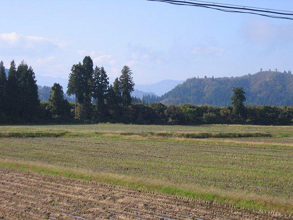 新潟県南魚沼市は日射しがまぶしく、あたたかくて気持ちがいいです