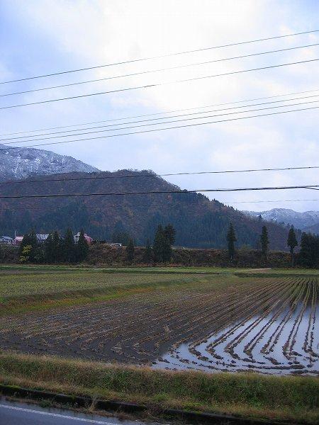 また雪が下まで降りてきています