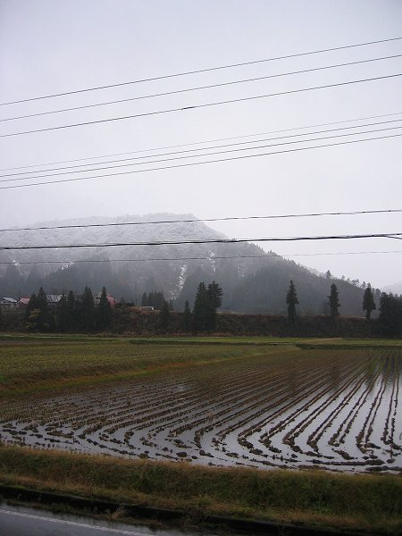 新潟県南魚沼市では朝から雨交じりの雪が降っています