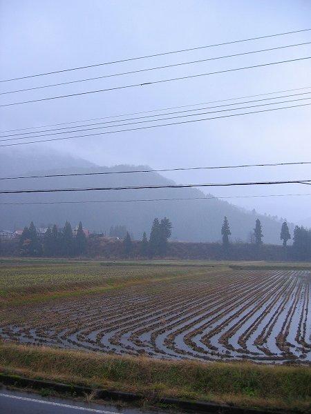 南魚沼市では午後になって雨が降り始めました