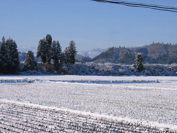 南魚沼市は青空が広がった雪景色になりました