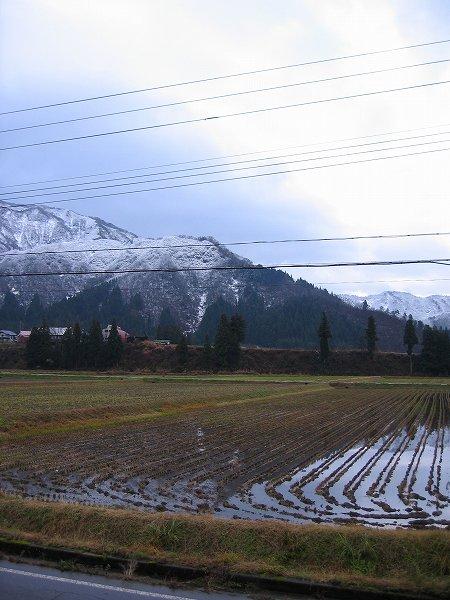また山の下の方まで白くなっています