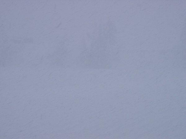 今日も魚沼産コシヒカリの田んぼでは雪が降り続いています