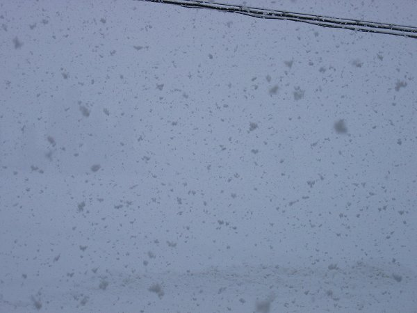 今日もまた魚沼産コシヒカリの田んぼは雪です