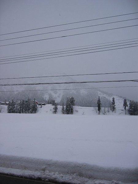 魚沼産コシヒカリの田んぼの大雪が峠を越えそうです