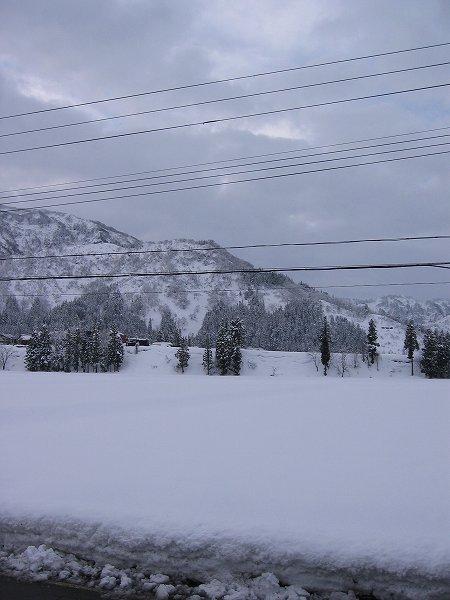 冬の朝にしては気温が高く、道路も凍っていません
