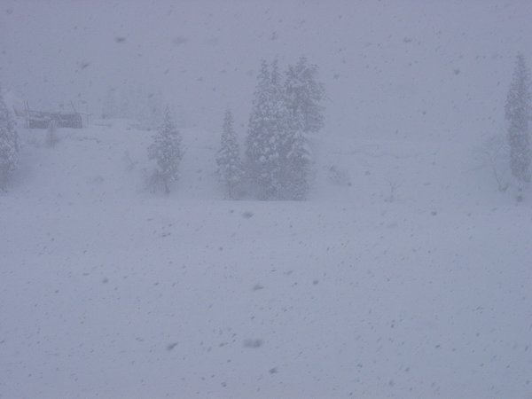 今日もまた雪がよく降ります