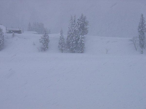 南魚沼市は昨日から大雪になりました