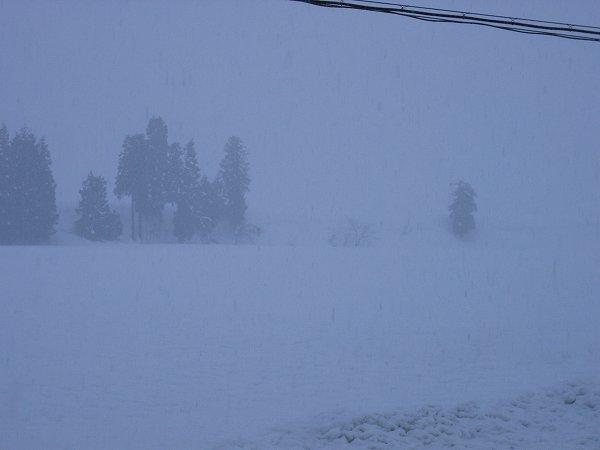 今朝の新潟県南魚沼市は湿った雪が降っています
