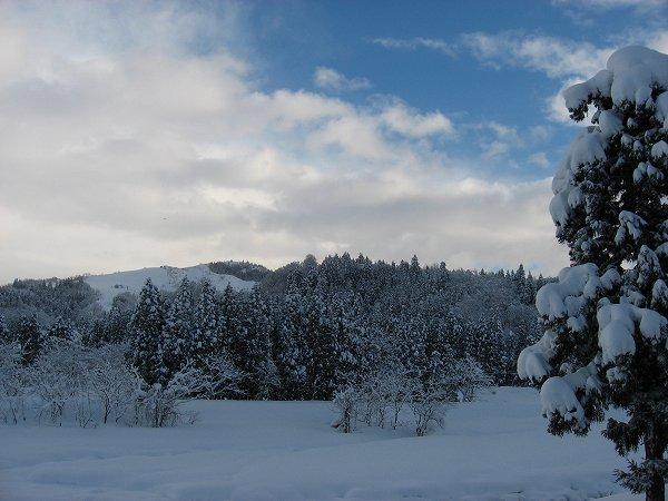 雪が止んで、少し青空が見えています