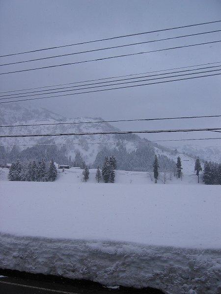 昨晩から今朝までに10cmくらい雪が積もりました