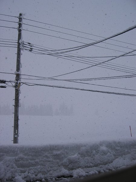 新潟県南魚沼市では久しぶりにまとまった雪が積もりました