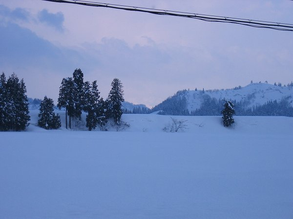 南魚沼市はあまり気温が下がらず、水気を多く含んだ雪が弱く降っています
